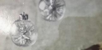 Αγριογούρουνο σάλμι